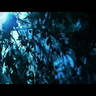 Embedded thumbnail for Lifehouse - Between the Raindrops