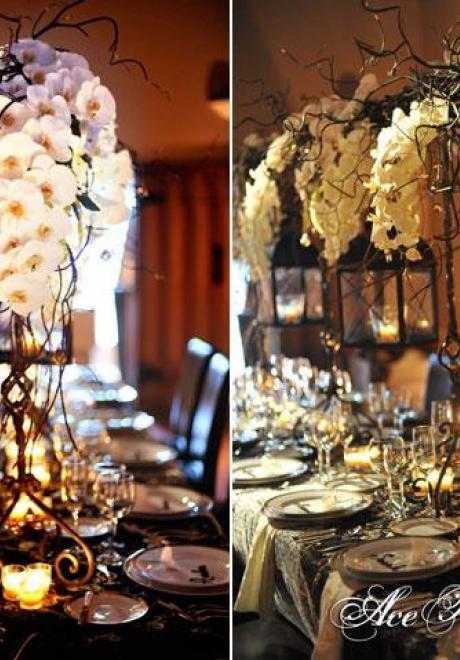 Orchid Wedding 4