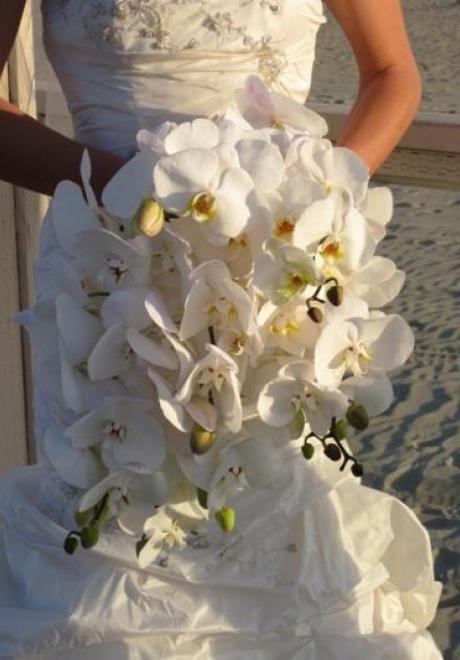 Orchid Wedding 8