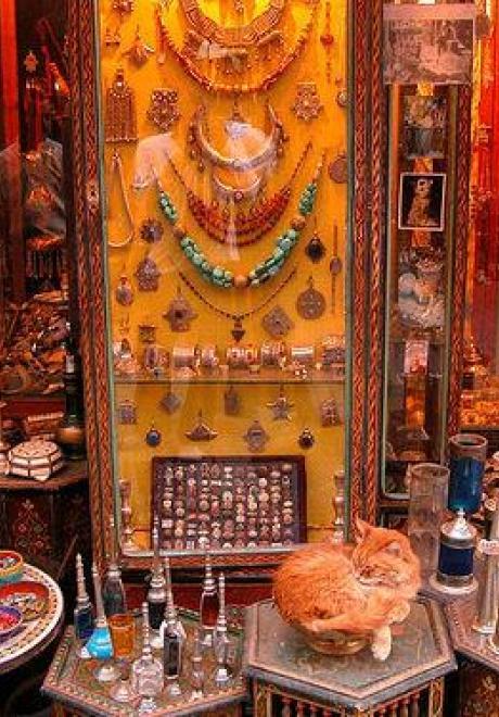 Marrakesh Honeymoon 8