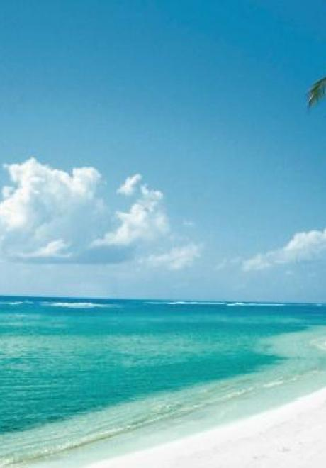 Your Honeymoon Destination: Cayman Islands