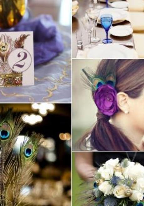 Peacock Wedding Theme 44