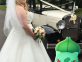 Bride Discovers Her Venue is a Pokemon Go Hot Spot