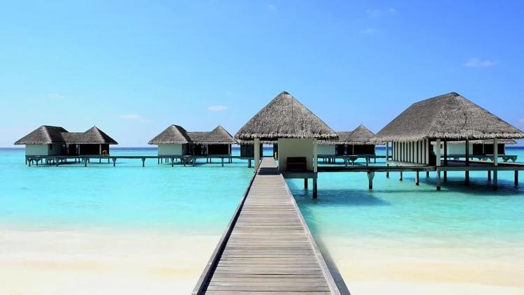 شهر العسل في جزر المالديف