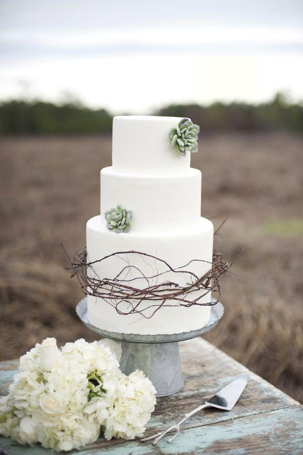 Succulent and Twigs Wedding Cake