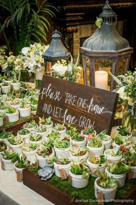 نباتات كتوزيعات اعراس
