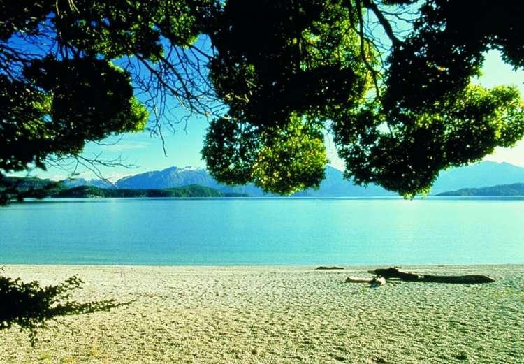 تيناناو، نيوزيلندا