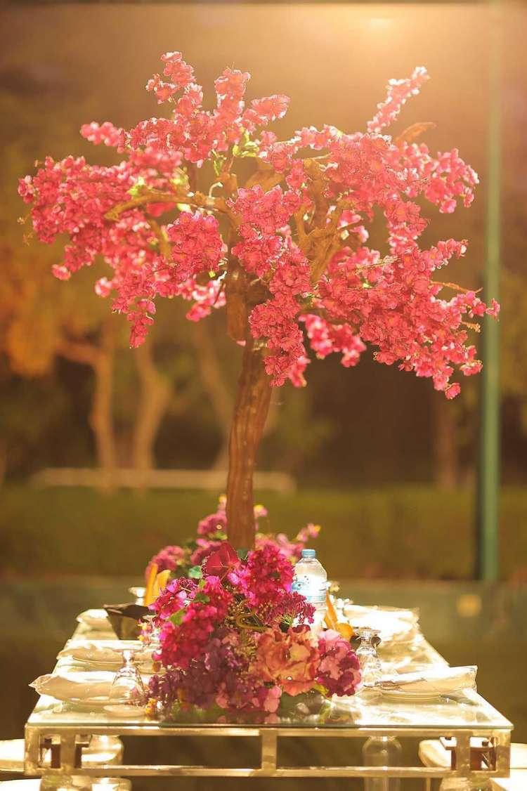 سنتربيس من أزهار الجهنمية