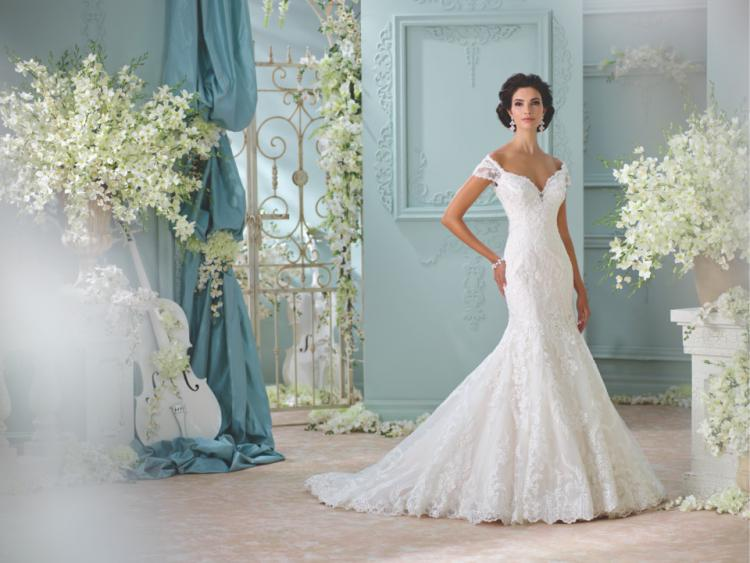 New Bridal Gowns at The Bridal Showroom