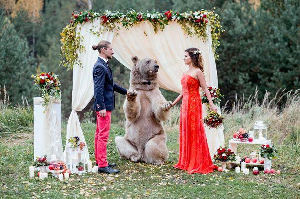 Russian Bride and Groom Invite a Bear to Their Wedding