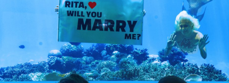 An Underwater Wedding Proposal in the Maldives