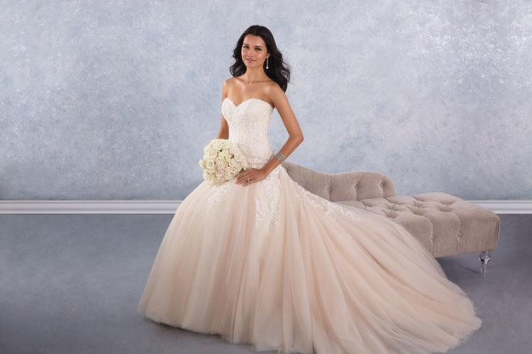 Details On Alfred Angelo Bridal Fashion House's Bankruptcy