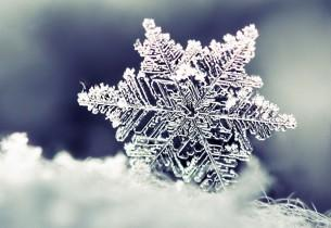 A Snowflake Wedding to Warm the Hearts