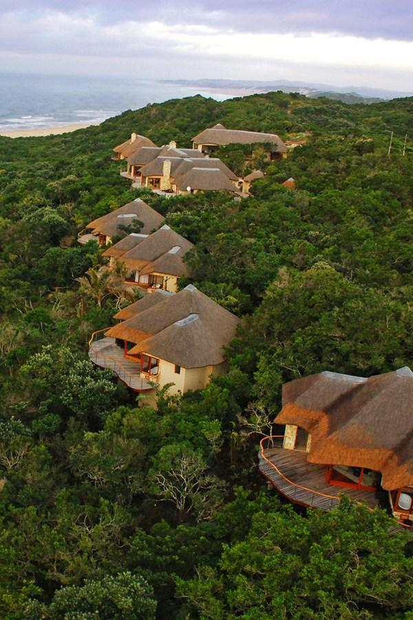 4 Beautiful Safaris For Your Honeymoon