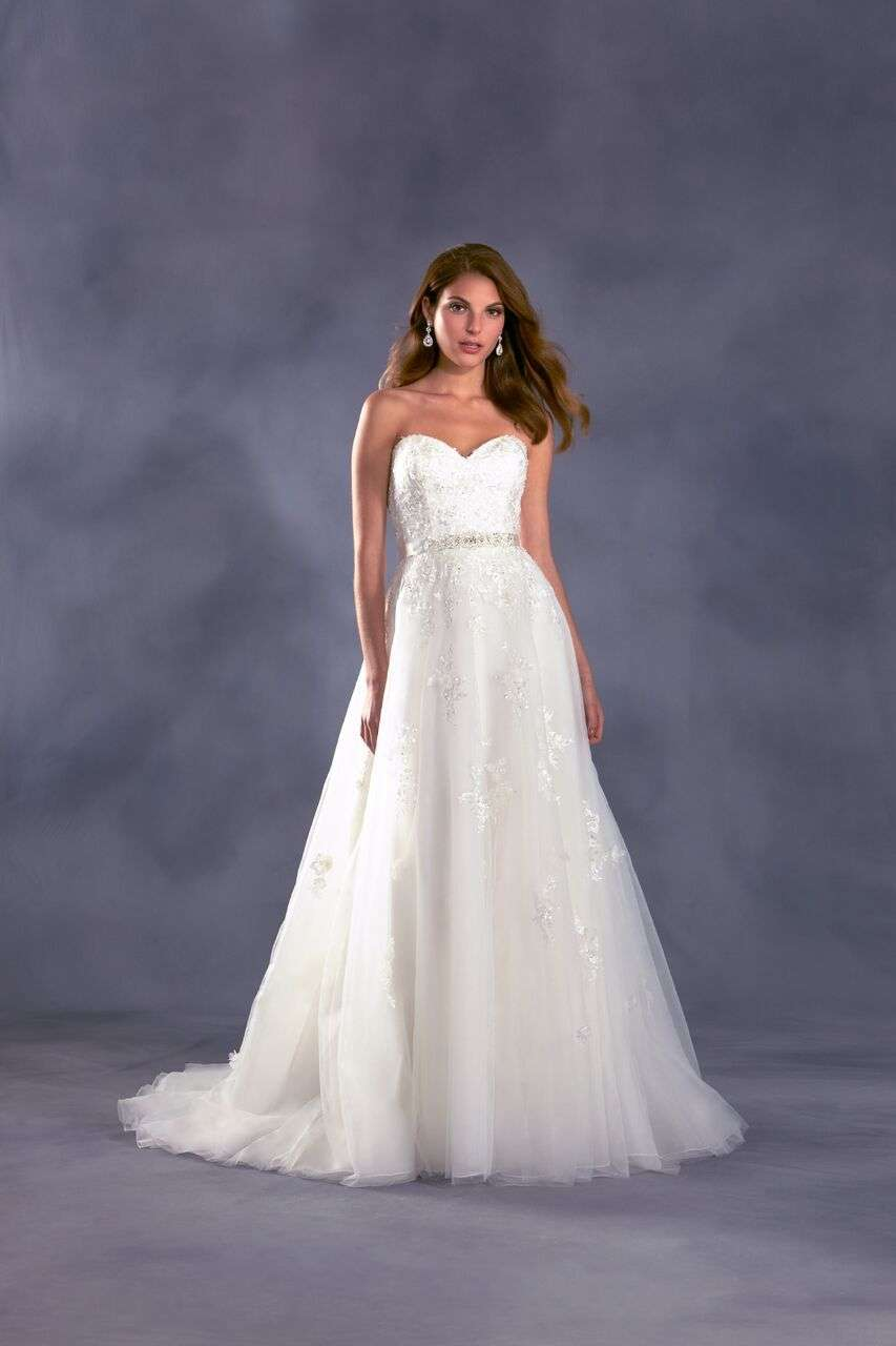 Disney Princess Themed Wedding Dresses