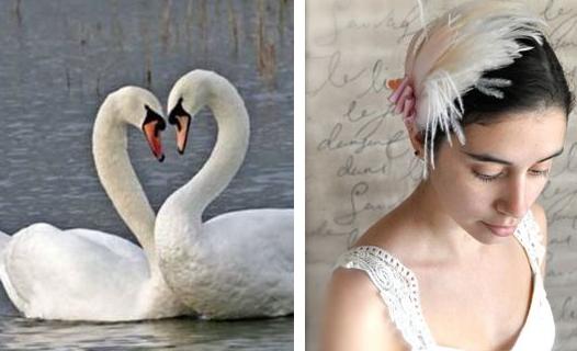 Elegant Purple Wedding At Black Swan Lake: An Elegant Swan Wedding Theme