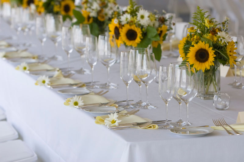 A sunflower wedding liane mccombs wedding event planning a sunflower wedding theme junglespirit Gallery