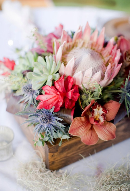 Ideas to add to your winter wedding arabia weddings for King protea flower arrangements