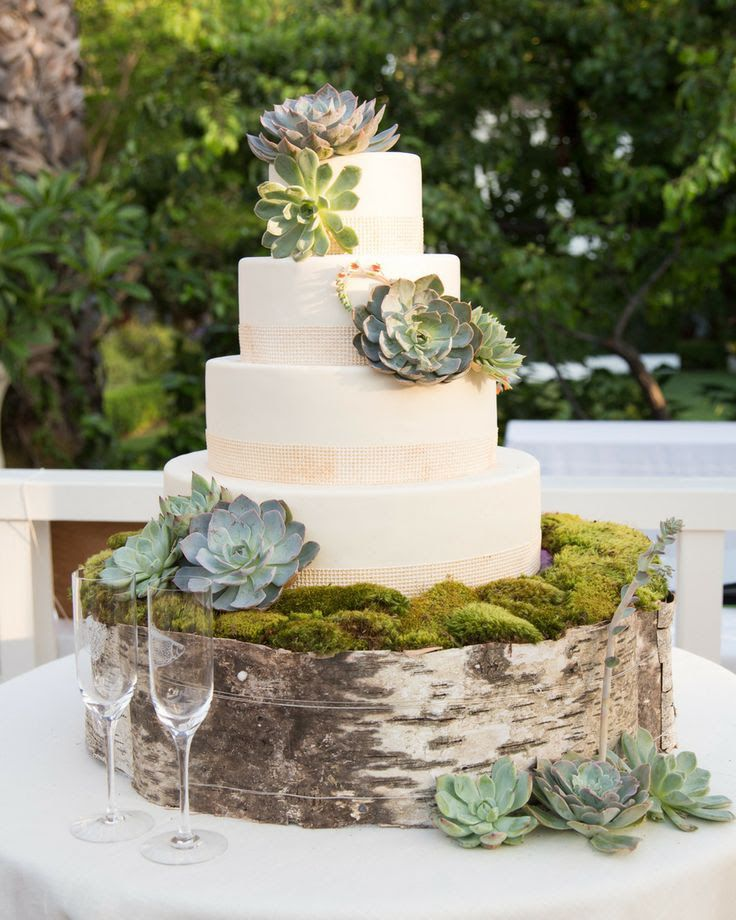 A Nature Inspired Wedding: Succulent Wedding Theme