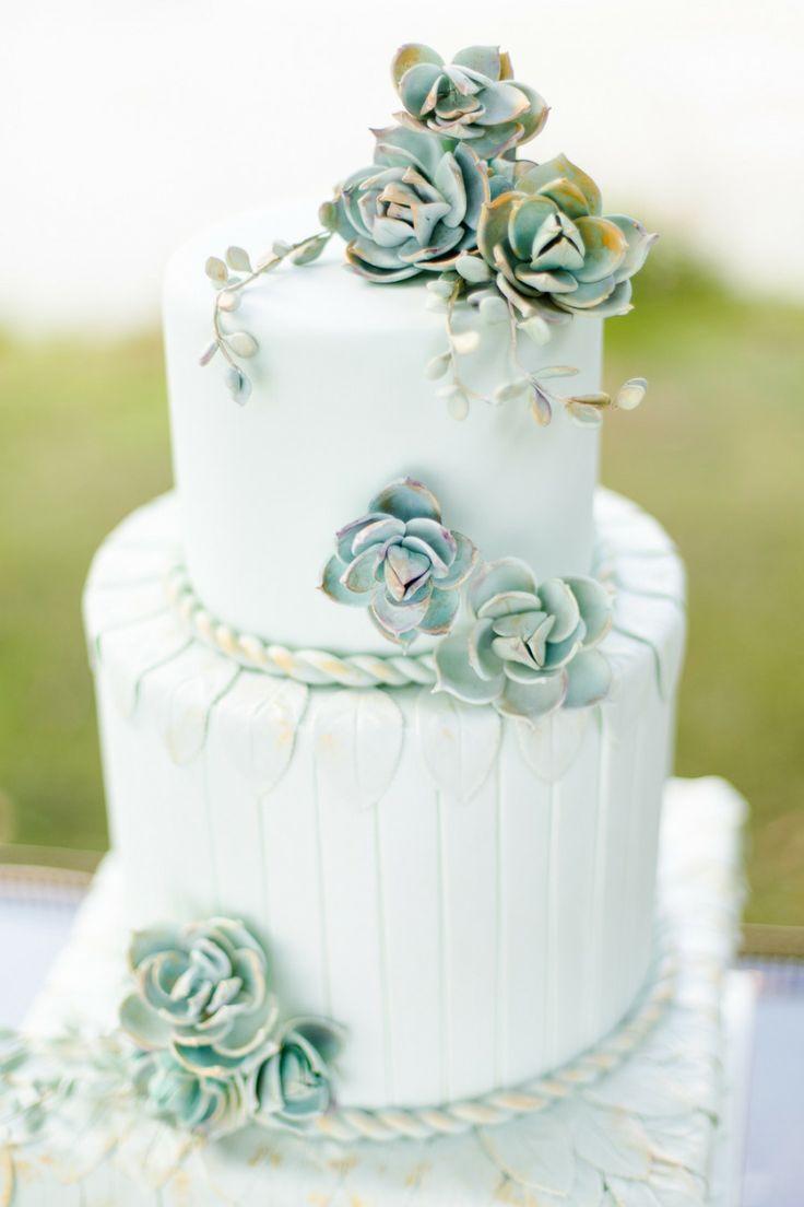 succulents cake