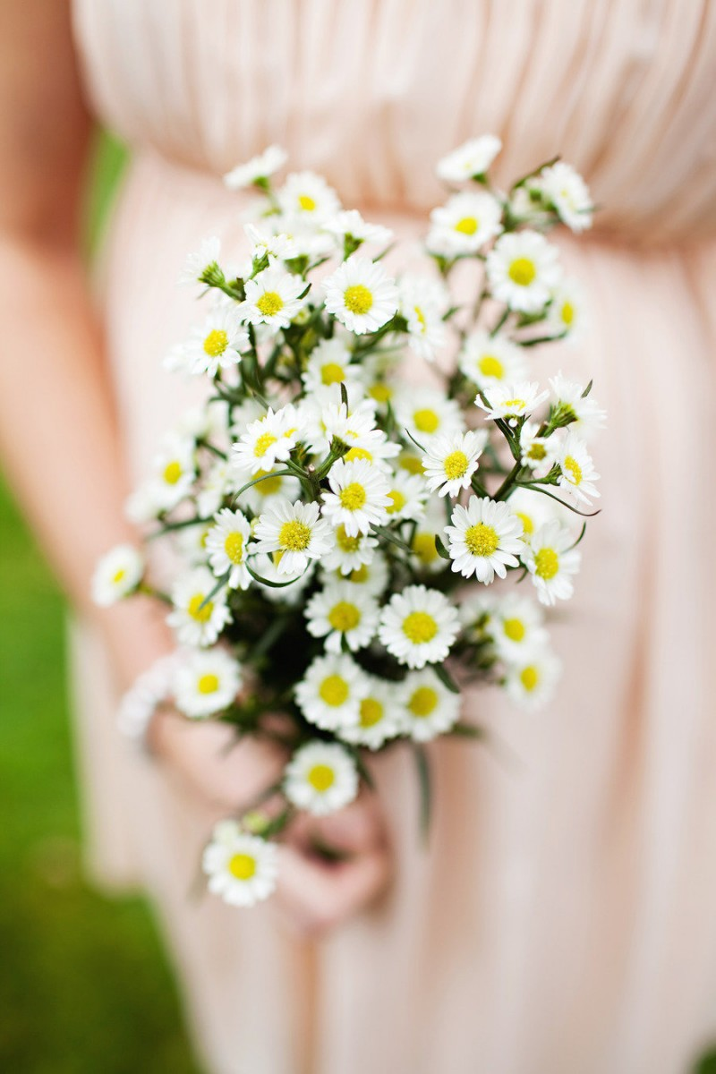 Darling Daisies For Your Wedding Arabia Weddings