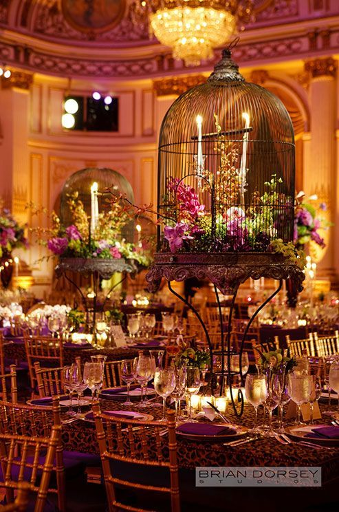 birdcage decorations wedding bird cages to decorate your outdoor wedding arabia weddings 1725